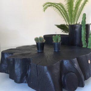Table basse en Bois Brûlé